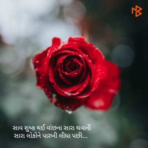 Post by Hitesh Rathod on 16-Oct-2019 08:17am