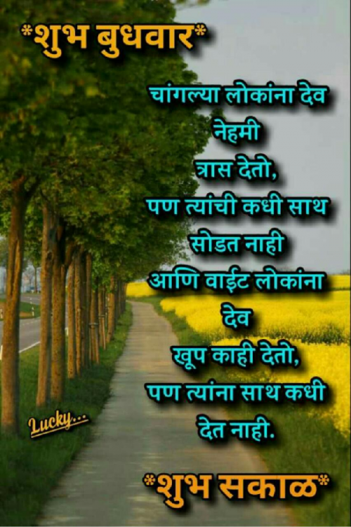 Post by Machhindra Mali on 17-Oct-2019 07:51am
