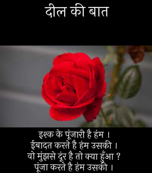 Post by Narendra Parmar on 17-Oct-2019 12:56pm