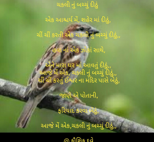 Quotes, Poems and Stories by Kaushik Dave