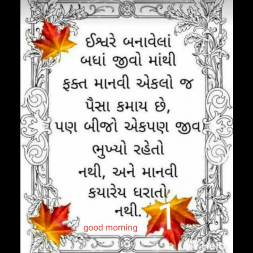 Post by Heena Patel on 02-Dec-2019 08:30am