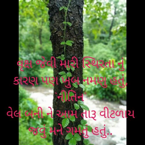 ગુજરાતી ब्लॉग स्टेटस Posted on Matrubharti Community   Matrubharti