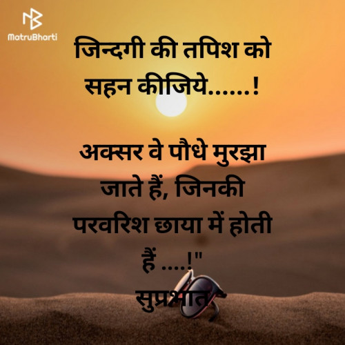 Shilpi Saxena_Barkha_ लिखित बाइट्स