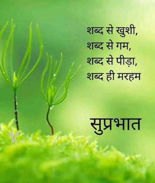 Quotes, Poems and Stories by Neha sharma | Matrubharti