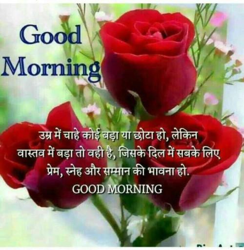 Marathi Good Morning status by Machhindra Mali on 07-Jan-2020 08:02am | matrubharti
