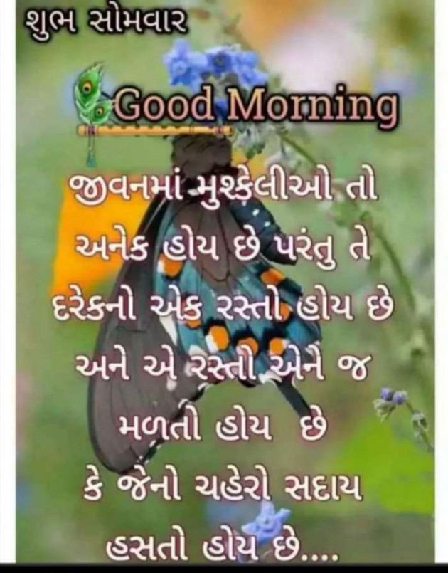 Post by Heema Joshi on 08-Jan-2020 08:06am