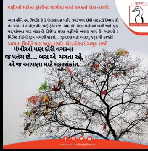 Sangita Behal मातृभारती पर एक पाठक के रूप में है | Matrubharti
