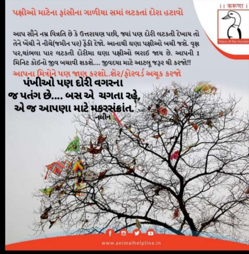 Quotes, Poems and Stories by Sangita Behal | Matrubharti