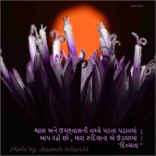 Gujarati Shayri status by Divya Soni on 24-Jan-2020 09:11:30pm | Matrubharti