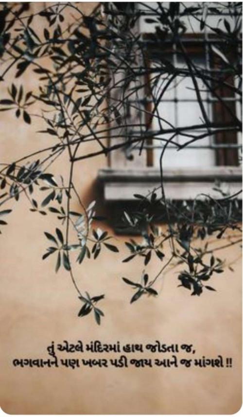 Quotes, Poems and Stories by Mahesh Jasani | Matrubharti