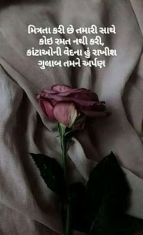 Quotes, Poems and Stories by Ritu Thakar | Matrubharti