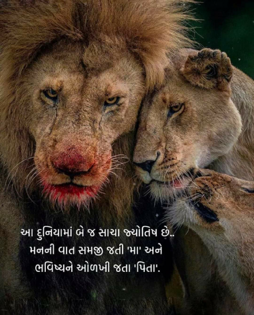 Quotes, Poems and Stories by Ansh Patel | Matrubharti