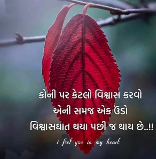 Post by Aarti on 20-Mar-2020 11:18am