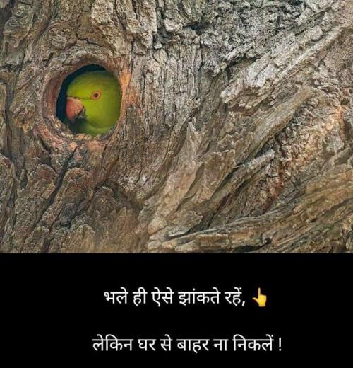 Post by Sangita Behal on 24-Mar-2020 04:11pm