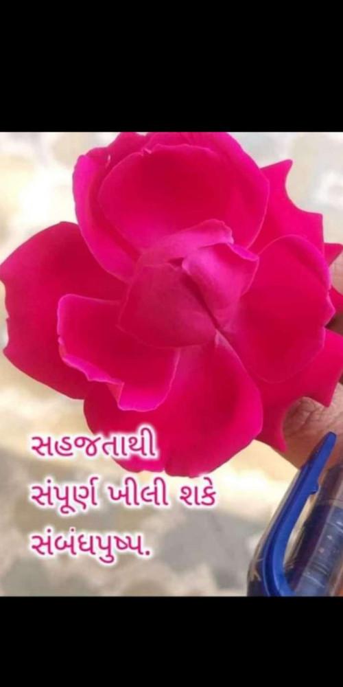 Post by Heema Joshi on 02-Apr-2020 06:19pm
