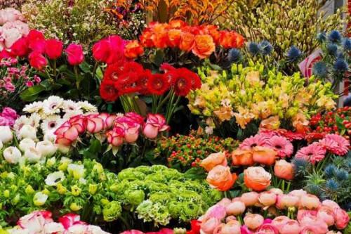 Post by Darshita Babubhai Shah on 07-Apr-2020 12:20pm