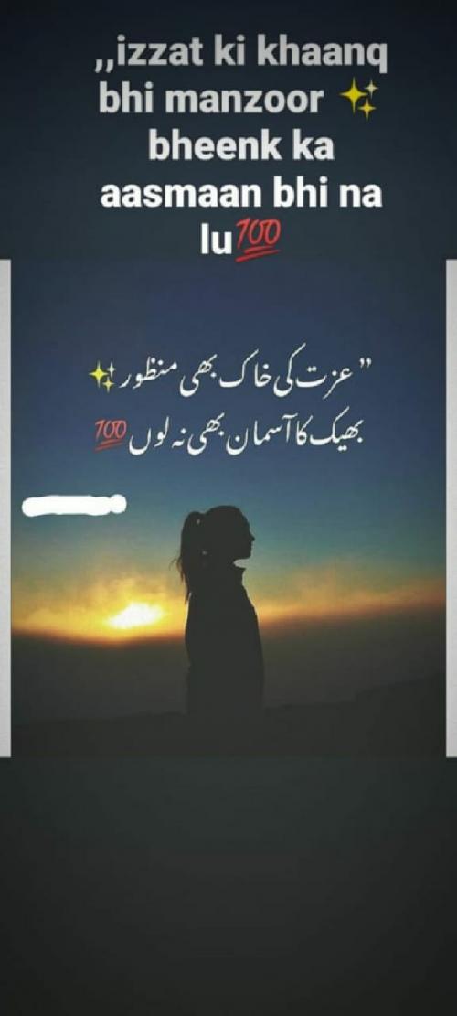 Post by Shaba Shaikh on 04-May-2020 02:21pm