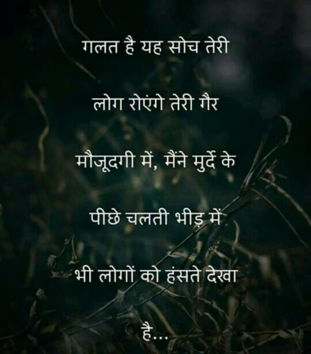 Post by Jassi Albert on 05-May-2020 02:24pm