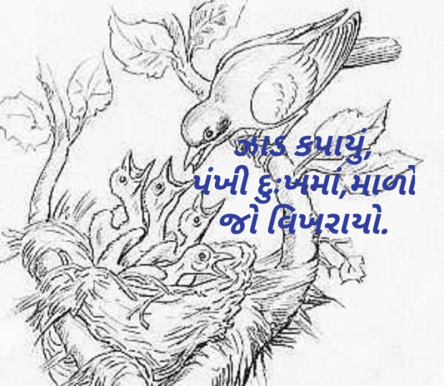 Post by Parmar Mayur on 29-May-2020 09:35am