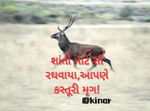 Post by Kinar Rana on 16-Jun-2020 07:55am