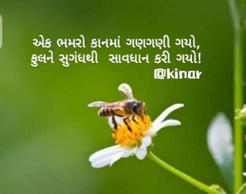 Post by Kinar Rana on 17-Jun-2020 07:43am