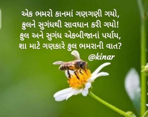 Post by Kinar Rana on 17-Jun-2020 07:50am