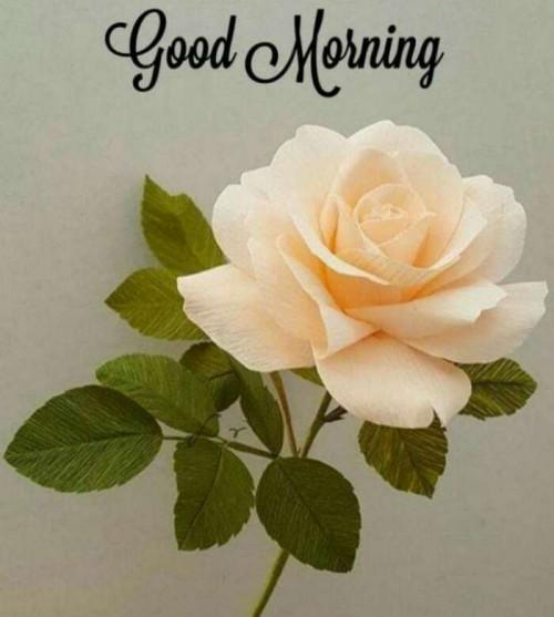 Post by anuradha jain on 02-Jul-2020 10:35am