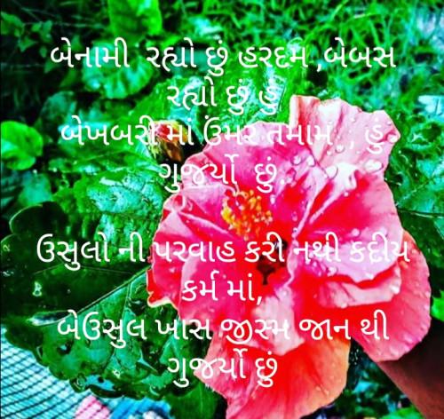 Post by મોહનભાઈ આનંદ on 03-Jul-2020 04:24pm