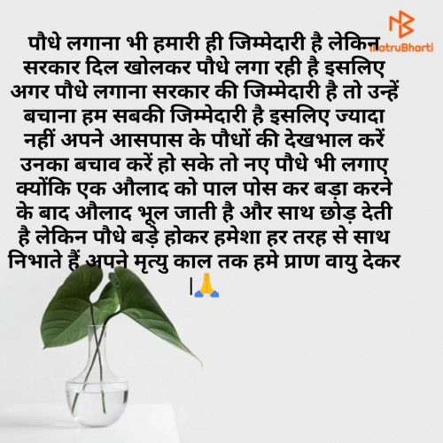 Post by Sarvesh Saxena on 05-Jul-2020 02:14pm