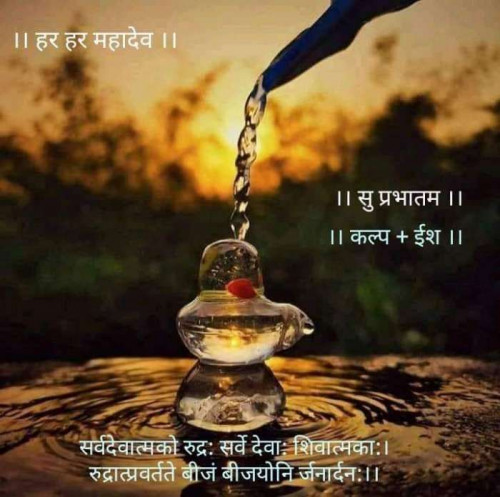 Post by Kalpesh Joshi on 06-Jul-2020 07:26am