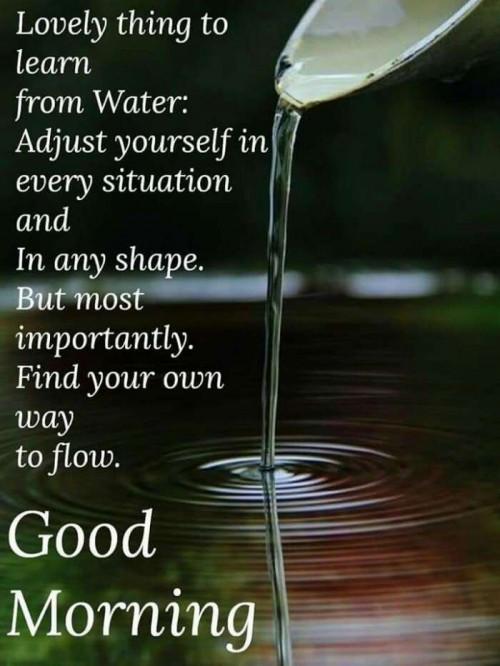Post by Shweta Deep on 10-Jul-2020 08:04am