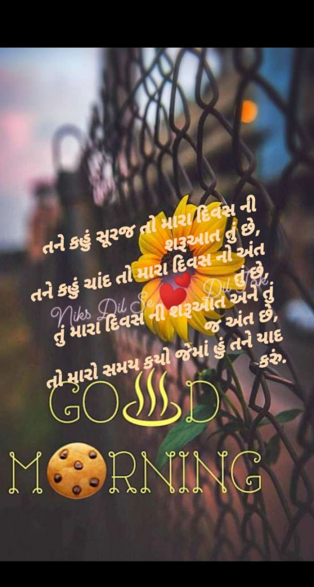 Post by Nikita panchal on 13-Jul-2020 11:04am