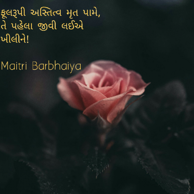 Post by Maitri on 14-Jul-2020 12:35am