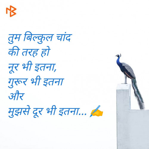 Post by Mahesh Prajapati on 19-Jul-2020 08:21am