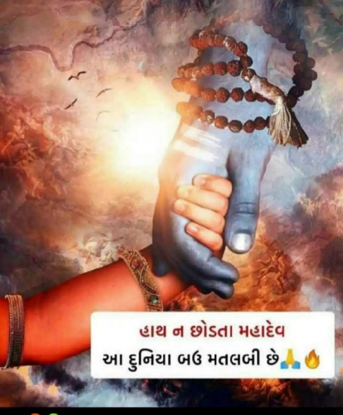 Post by Heer on 24-Jul-2020 02:56pm