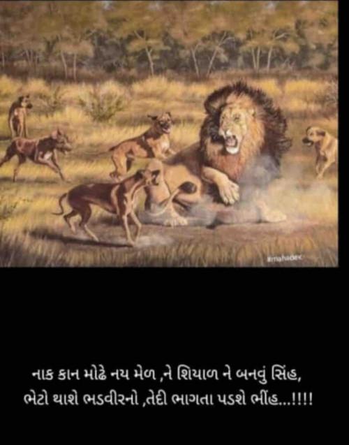Post by Jaypal AhiRaNa on 25-Jul-2020 05:35pm
