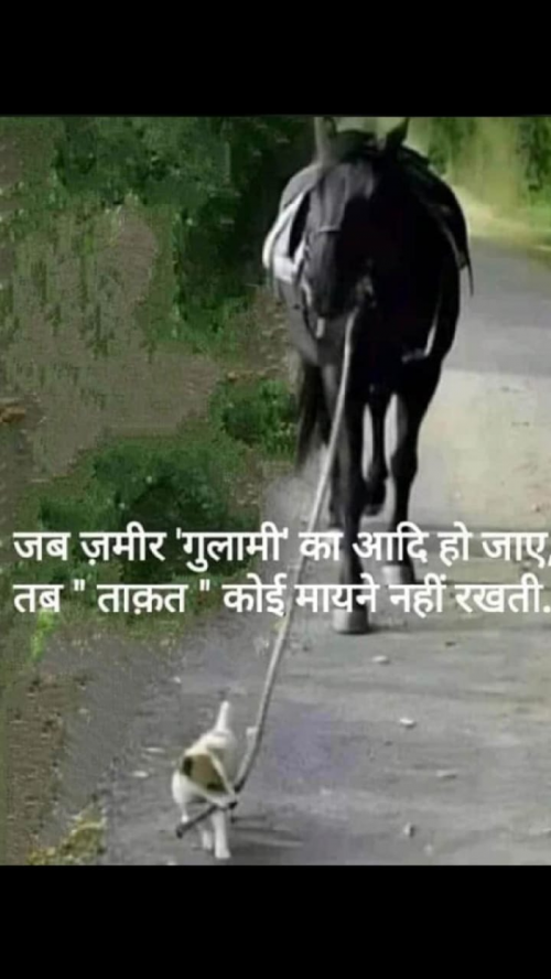 Post by Yogi Forever on 05-Aug-2020 09:17am