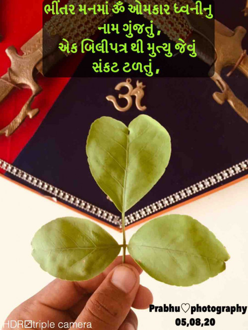 Post by પ્રભુ on 05-Aug-2020 11:19am