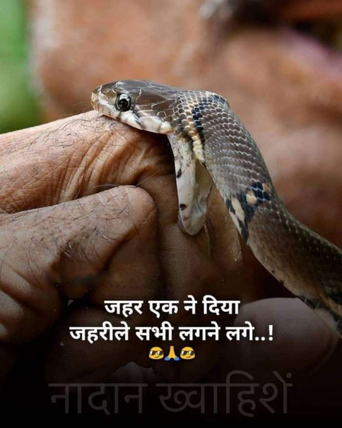 Post by Parmar Narvirsinh on 08-Aug-2020 08:05pm